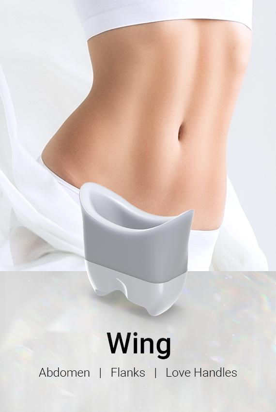 Wing_mo